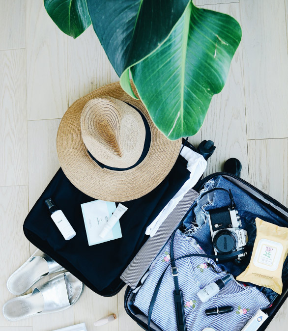 An open suitcase shown from above revealing folded clothes, beauty products, a camera, and a straw hat. Leaves of a large plant hang into the scene from above.